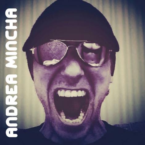 amincha